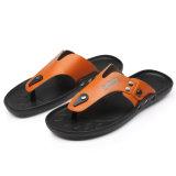人のスリッパの高品質は蹄鉄を打つ浜の靴(FTS1020-2)に