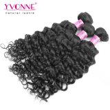 Rohes kambodschanisches Jungfrau-Haar-italienische lockige Menschenhaar-Extension Yvonne-100%