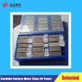 As placas de blocos de carboneto de tungsténio