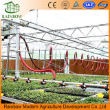 Wässernbewässerung-Plastikentwurfs-Sprenger-System