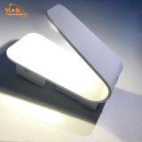 Luz de aluminio de la pared de la potencia 6W LED del diseño especial para al aire libre