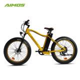 大人のための9つの速度山の電気バイク