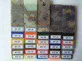 Le Groupe des Dix de camouflage (camouflage de Digitals /Stripe)