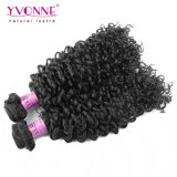 Yvonne Virgem brasileira de cabelo humano Malaysian Cabelos encaracolados