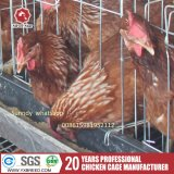 Maison de la couche de poulet avec de la volaille de la machinerie agricole ventilateur d'échappement