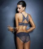 X-stijl Reeks van het Ondergoed van de Lingerie van de Vrouwen van het Damesslipje van de Bustehouder van het Kant de Vastgestelde Sexy