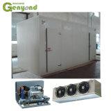 Frigorífico Congelador Recipiente do evaporador da caixa do compressor Construção Máquinas Equipamentos para armazenamento a frio cebola batata carne de peixes
