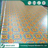 Variedad de colores para papel para la construcción de madera contrachapada superpuesta