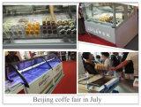 Congelador Bahrein de la visualización del helado del Popsicle
