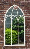Specchio della parete di figura di Bridcage dell'annata & specchio della finestra