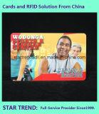 Cartão da identificação do estudante com o código de barras para a escola