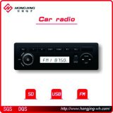 Sistema de Audio Multimedia de coche la radio FM