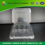 Contenitore di alimento di plastica a gettare materiale dell'animale domestico con il coperchio