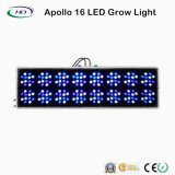Lo spettro completo LED di alto potere si sviluppa chiaro per sviluppo dell'interno (Apollo 16)