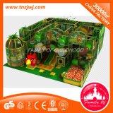 De verschillende Apparatuur van de Speelplaats van het Labyrint van de Gymnastiek van de Wildernis van Jonge geitjes Binnen voor Verkoop