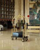 De Kar van de Bagage van Birdcage van het hotel
