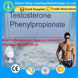 Testosterona crua Phenylpropionate do pó dos esteróides de 99% para o Bodybuilding CAS 1255-49-8