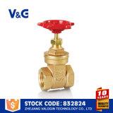 Válvula de porta de cobre de bronze (VG-B12502)