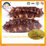 Suministro de la fábrica de GMP extracto puro de pepino de mar