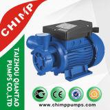 Vervangstukken van de Pomp van het Water van de Motor van de chimpansee Qb60 de Elektrische Kleine Rand