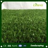 競争価格のサッカーに使用する人工的な芝生を美化する