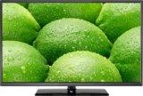 65-duim LEIDENE van Uhd 4k Vertoning met Industrieel Comité, Interface HDMI