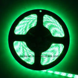 5m verde 12V SMD5630 lámpara LED Strip