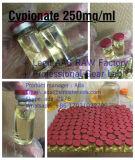 일반적인 작은 유리병 Cypionate 250 분산을%s 완성되는 스테로이드 기름 주입 테스토스테론 Cypionate 250mg