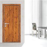 Porte encastrée intérieure en fibre de carbone solide (GSP12-008)