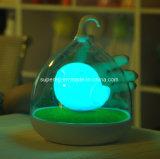 Birde Design Sensor táctil de vibración Birdcage lámpara