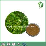 Extrato de bambu orgânico da folha de Slilica 70% da planta da alta qualidade