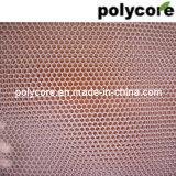 Favo de mel do policarbonato (PC6. -70)