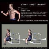 Equipamentos de Fitness / Musculação para Extensão de Tríceps Assentados (M7-1006)