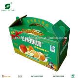 Скатная упаковке дизайн (FP7050)