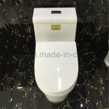 El cuarto de baño de cerámica de una pieza Inodoro