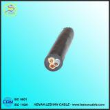 Geïsoleerdt pvc van de Leider van het koper en het In de schede steken de Kabel van de Macht 3X6mm2