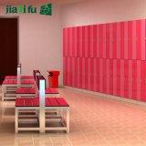 Kasten van de Zaal van de Sauna van Jialifu de Compacte Gelamineerde
