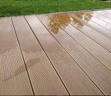 L'horizontal en plastique réutilisé boise le plancher WPC