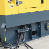 60Hz eerste Macht 30kVA Genset met Alternator Stamford