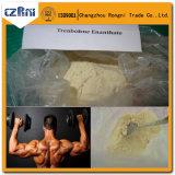 Stéroïdes Trenbolon Enanthat/Tren E 10161-33-8 de jaune d'évolution de muscle