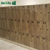 Kast van de Kleedkamer van Jialifu de Compacte Gelamineerde met Bank