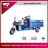 Transporte das crianças da energia eléctrica, triciclo da bicicleta da carga da compra de mantimento