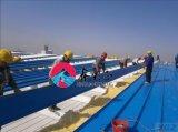 Sección H cónicos de estructura de acero de bajo coste de Hangar prefabricados en Angola
