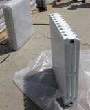 L'Italie Hot Sale radiateur en fonte pour la maison chaudière de chauffage de l'eau