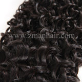 Vente chaude Kinky Curly Human vierge Tissage de cheveux
