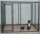 Gabbia galvanizzata del cane del reticolato di saldatura dell'acciaio 6ftx5FT con la fossa di scolo cane/del tetto