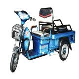 ドラム・ブレーキと電気貨物三輪車Trikeをロードする大きい貨物