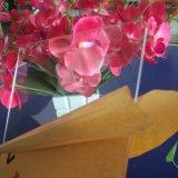 Все цветные высококачественного литого акрилового листа