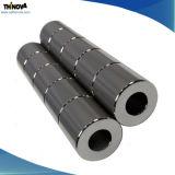 De sterke Krachtige Permanente Magneten van de Cilinder NdFeB met Verschillend Plateren