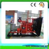 Silencio contenedor de gran potencia de 600 Kw grupo electrógeno de Gas Natural
